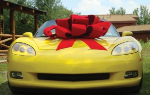 cheap-dealer-supply-car-bow-for-mom